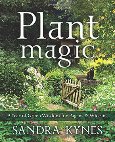 wp34 review plant magic.JPG