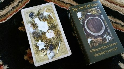wp35_tarot-of-bones-by-lupa-011-card-back
